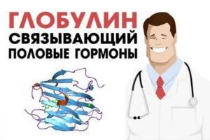 povishen-seks-svyazivayushiy-globulin
